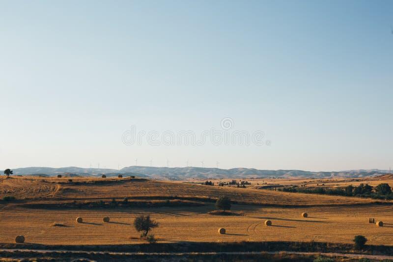 Guld- solnedgång över vetefält med höbaler royaltyfri fotografi
