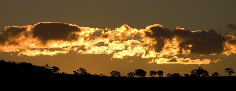 Download Guld- solnedgång arkivfoto. Bild av silhouette, stråle - 242408