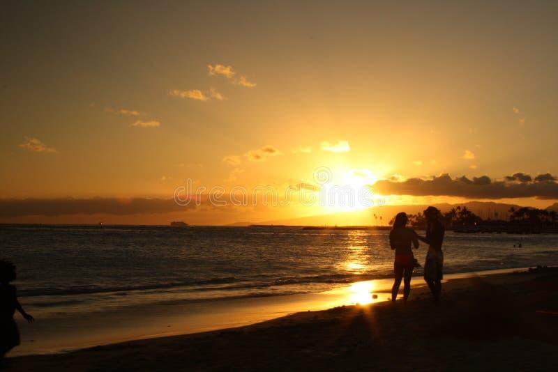 guld- solnedgång arkivbilder