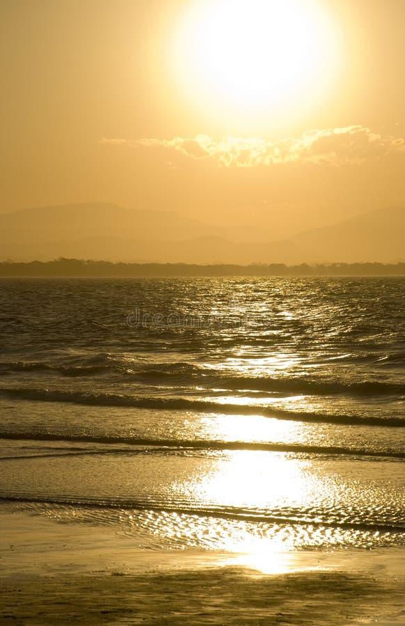 guld- solnedgång för fjärdbyron royaltyfri bild