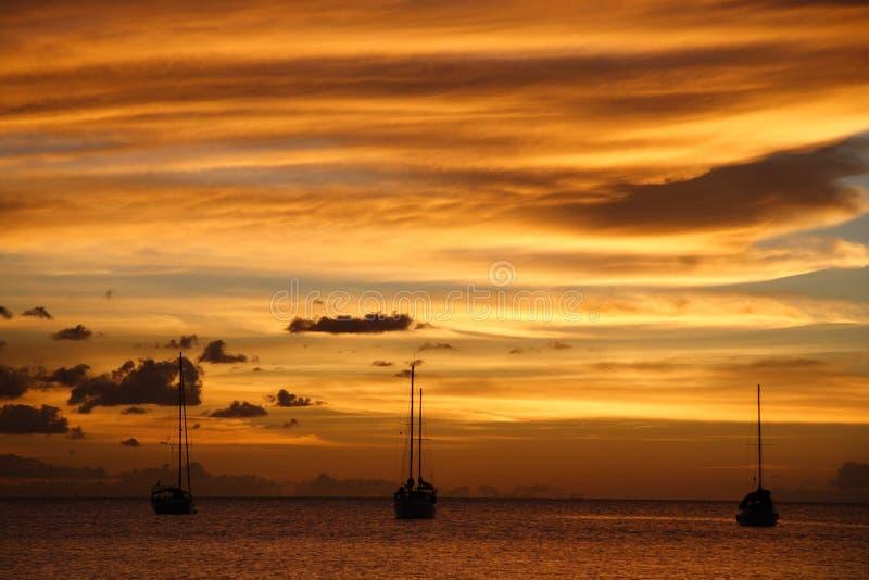 guld- solnedgång för karibisk kryssning arkivbild