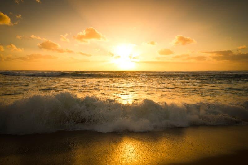 Guld- solnedgång och en krascha våg royaltyfria bilder
