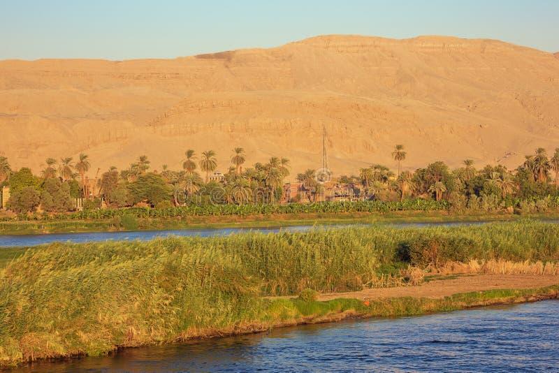 Guld- solstrålar på bankerna av Nilen royaltyfri bild