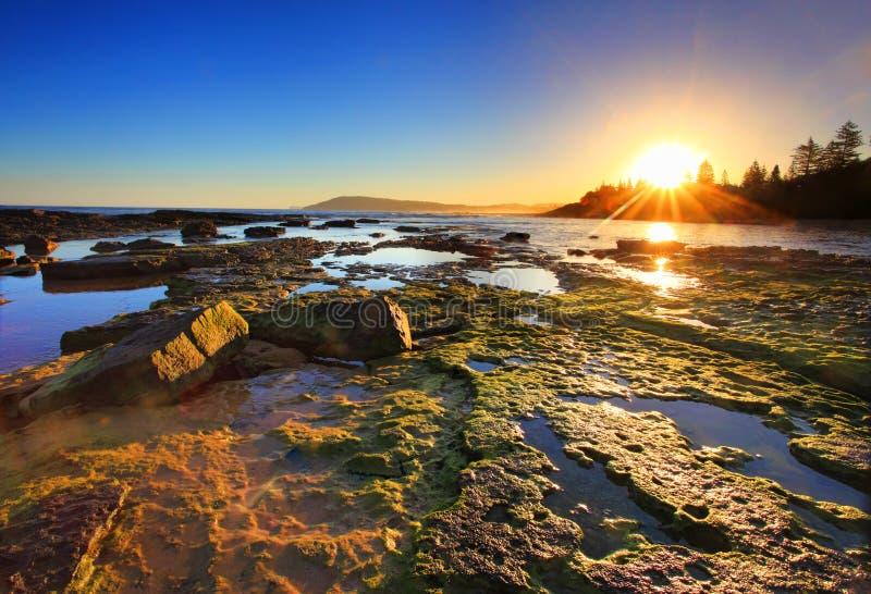 Guld- solstrålar sträcker över reverna på solnedgången arkivbilder
