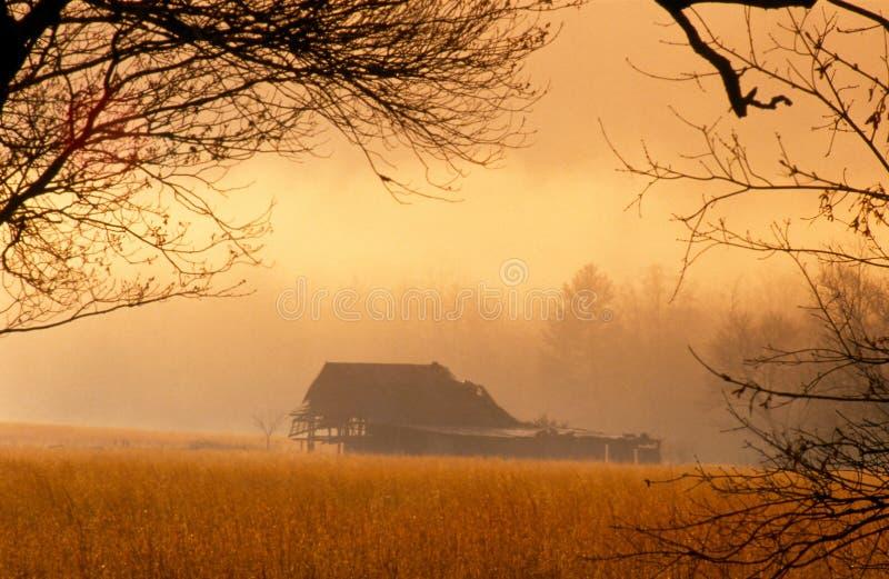 Guld- soluppgång över gammal ladugård i den Cades lilla viken royaltyfri bild