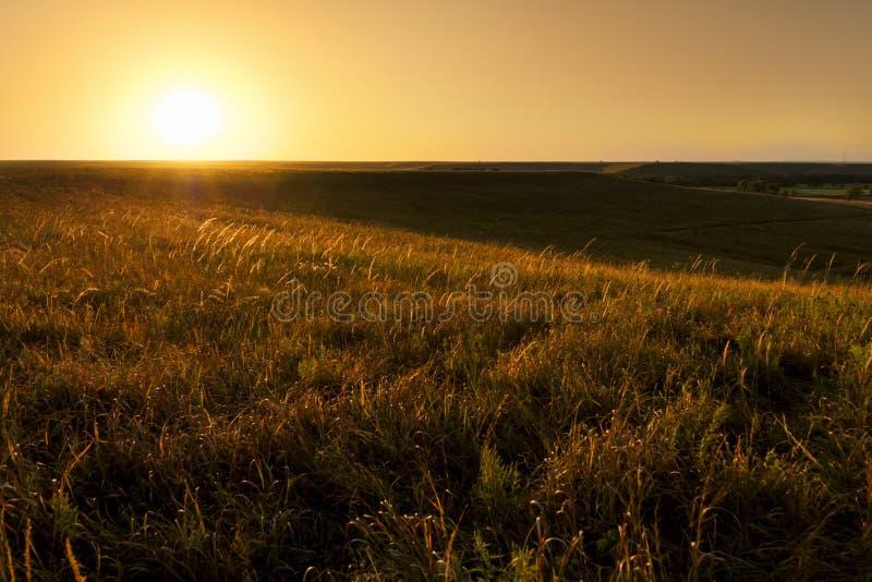 Guld- soluppgång på nationalparken för Kansas Tallgrass präriesylt arkivfoto