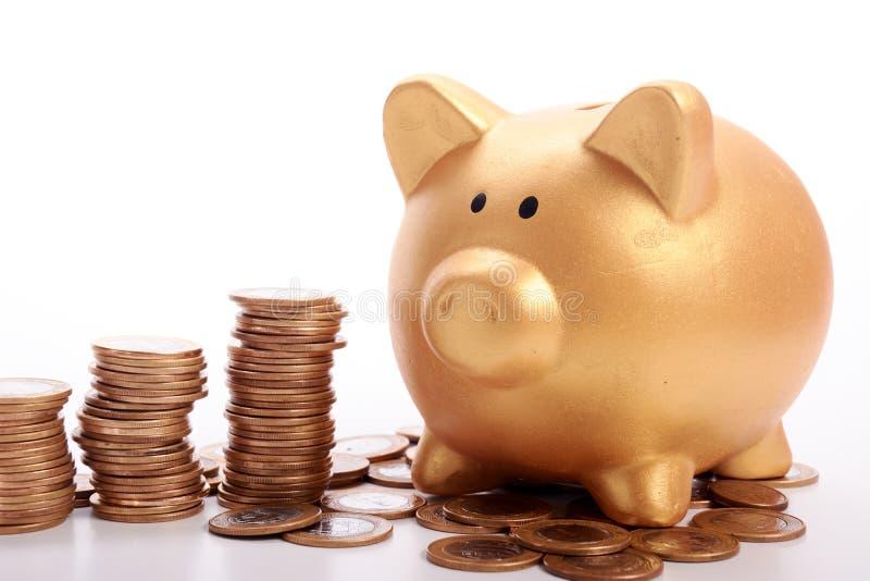 Guld- spargris med besparingar i mynt av de brasilianska pengarna fotografering för bildbyråer