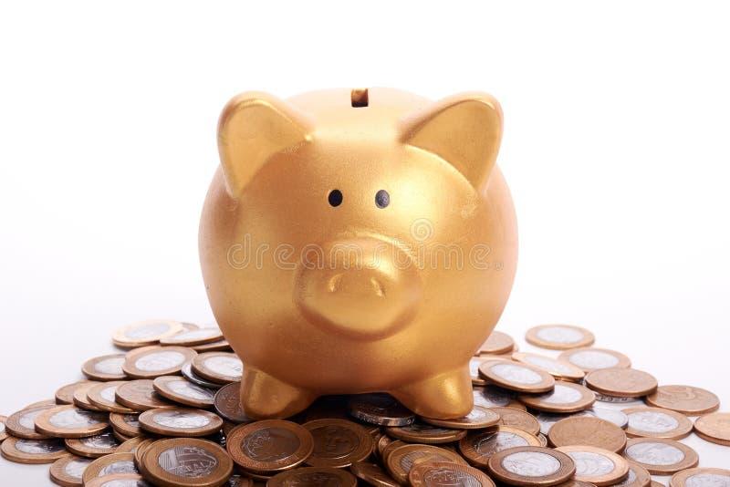 Guld- spargris med besparingar i mynt av de brasilianska pengarna arkivfoton