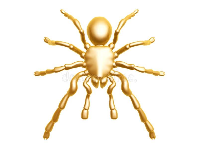 guld- spindel arkivbild