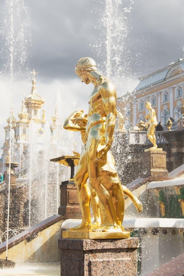 Guld- statyer av den storslagna kaskaden i Peterhof okhtinsky petersburg russia för bro saint arkivfoto