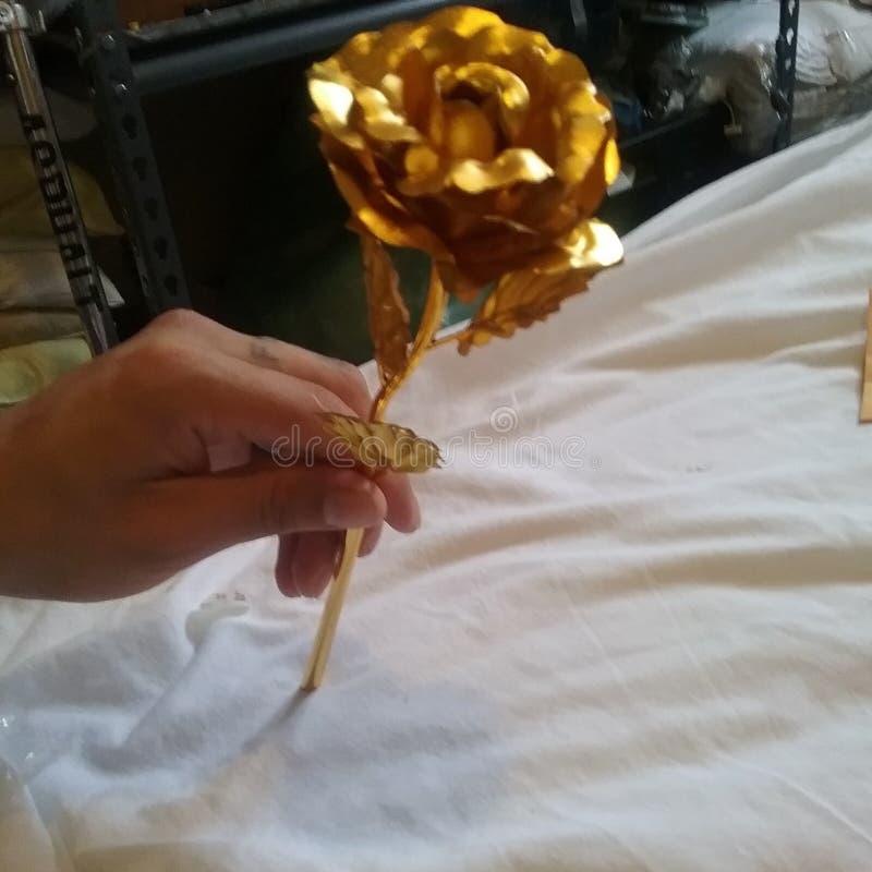 guld- steg royaltyfri bild