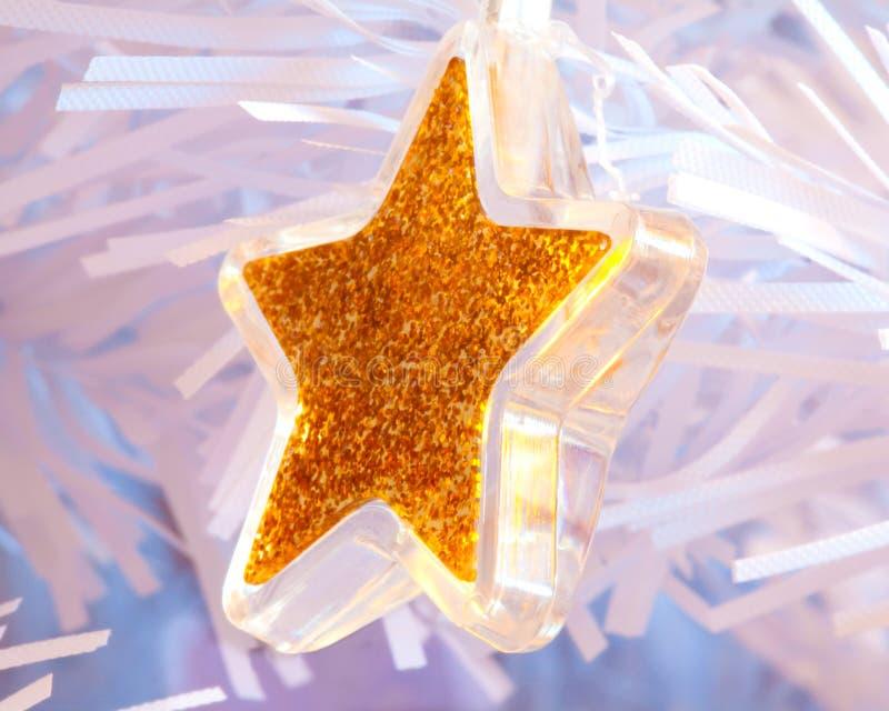 Guld- stjärnabelysning royaltyfri bild