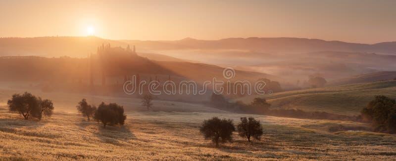 Guld- strålar i Tuscany arkivfoton