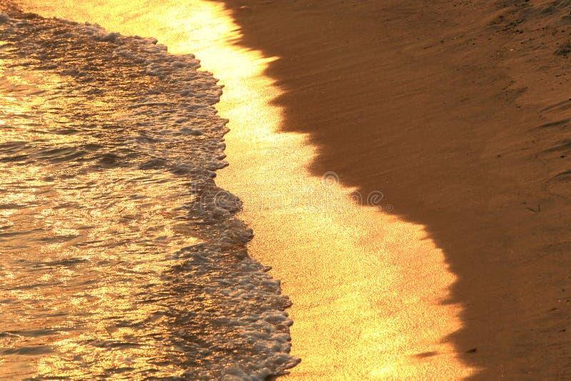 guld- strand royaltyfri bild