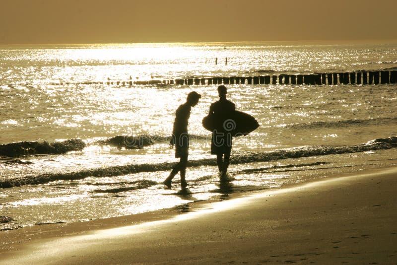 guld- strand royaltyfria bilder