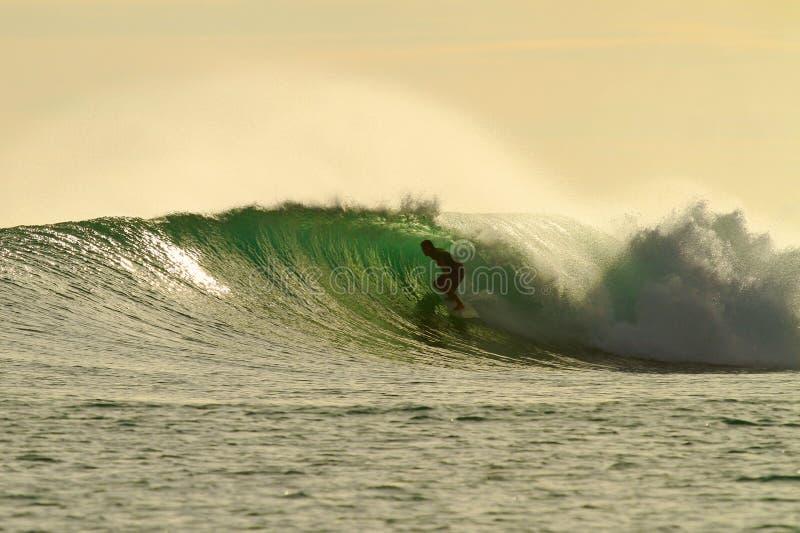 guld- surfarerör för fantastiskt glöd arkivfoto