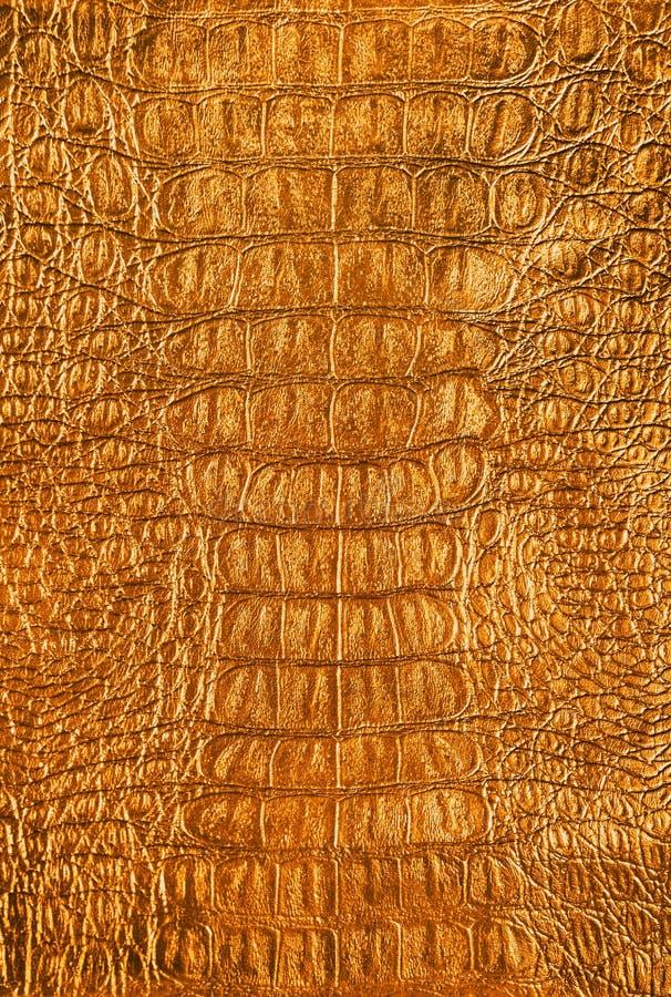 guld- textur royaltyfria foton