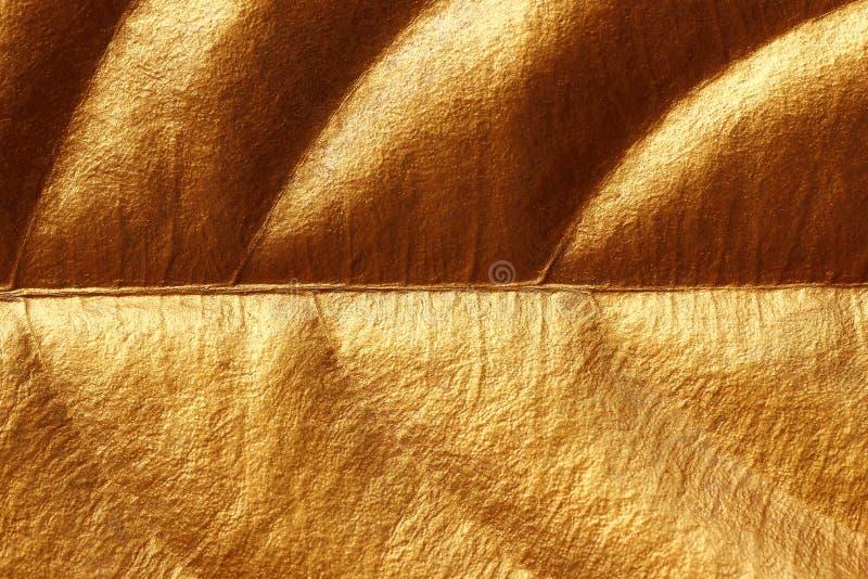 Guld- textur f?r skinande gult blad f?r bakgrund fotografering för bildbyråer