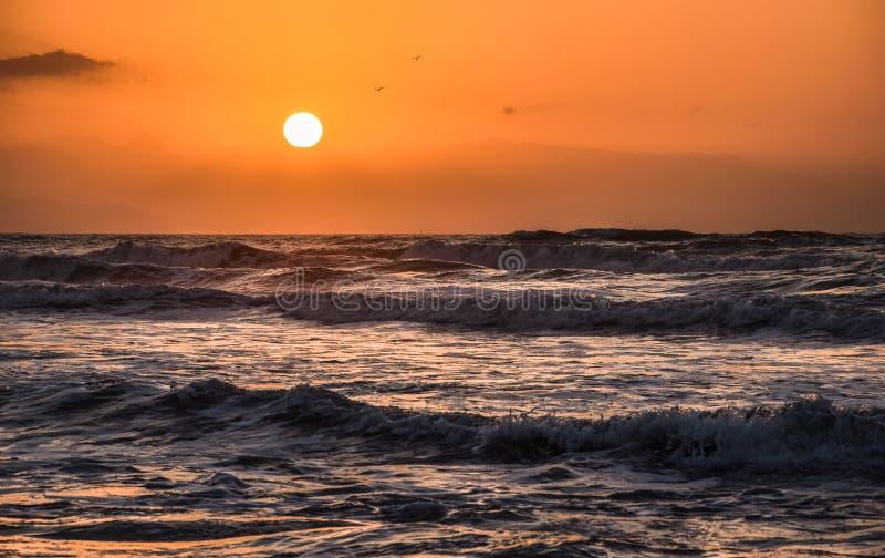 Guld- timme på stranden royaltyfri bild