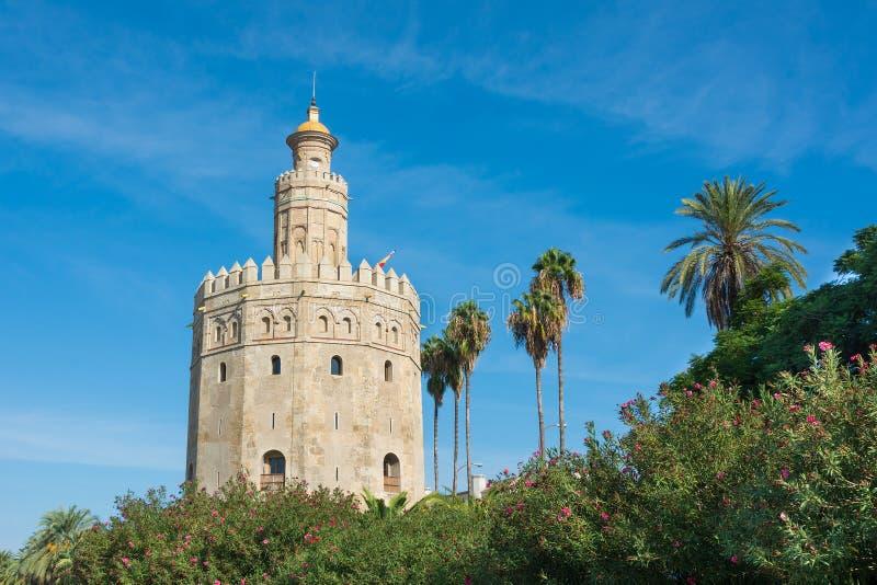 Guld- torn Seville Spanien arkivfoton