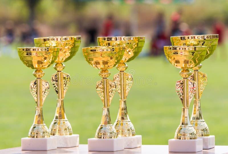 Guld- trofékoppar för härlig mästare för vinnare i fotbollkomp royaltyfria bilder