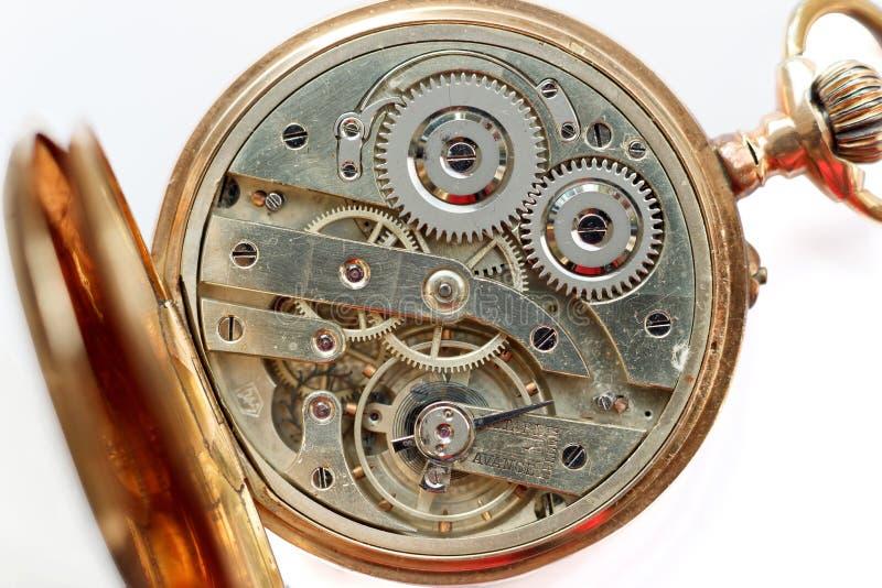 Guld- urverk på vit bakgrund Detalj av klockamaskineri Gammal mekanisk rova Skjuten makro arkivbilder