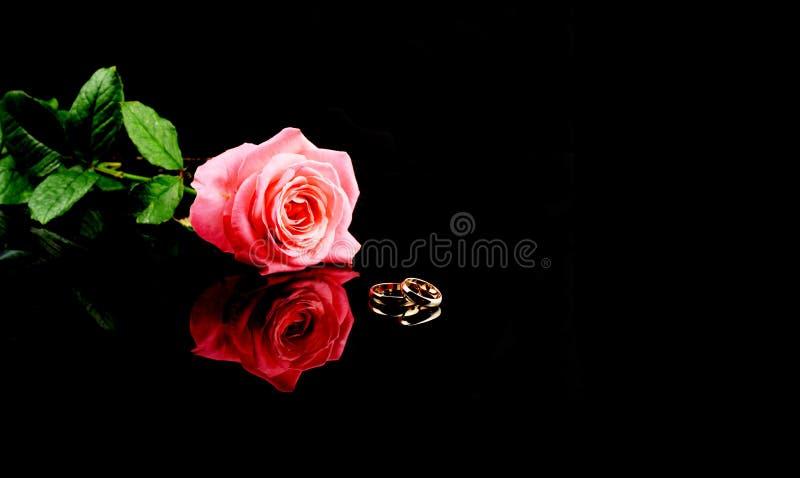 Guld- vigselringar för nygifta personer med en röd rosa blomma på en isolerad svart bakgrund royaltyfria foton
