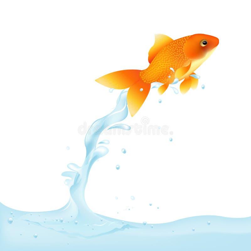 guldfisk som ut hoppar vektorvatten vektor illustrationer