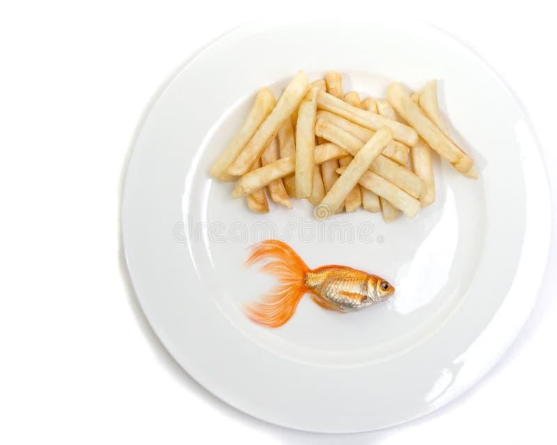 Guldfiskfisk & chiper arkivbilder