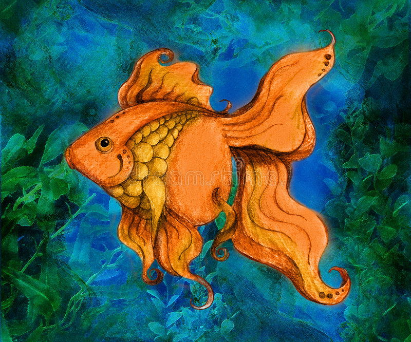 guldfiskillustrationsimning vektor illustrationer