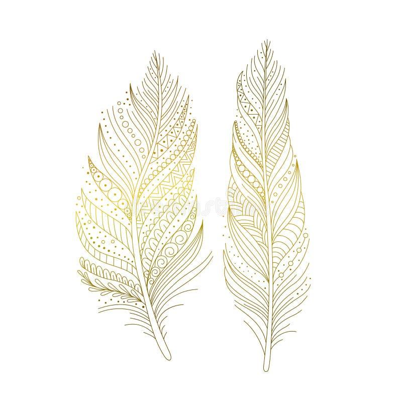 Guldfjädrar isolerade vektorn royaltyfri illustrationer
