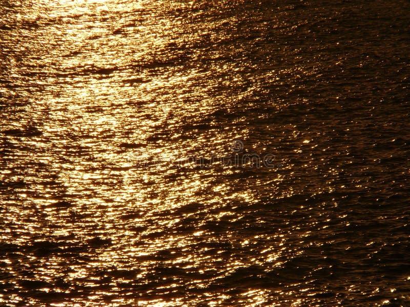 guldhav fotografering för bildbyråer