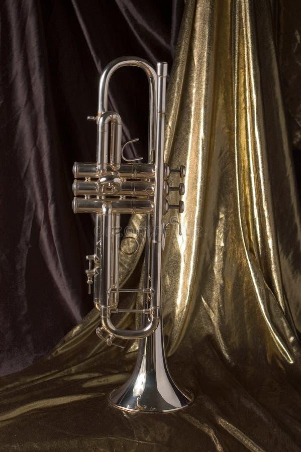 Guldsilver Royaltyfri Fotografi