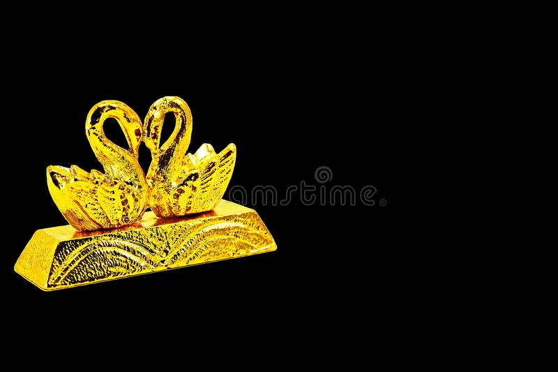 Guldtacka med svangarnering royaltyfria foton