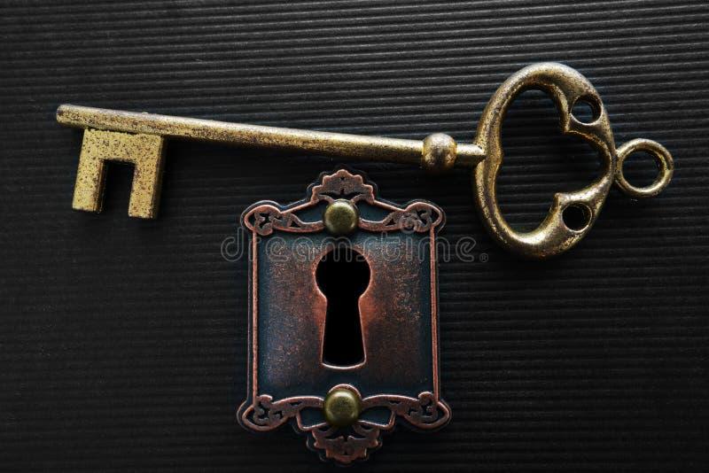 Guldtangent och lås royaltyfri bild