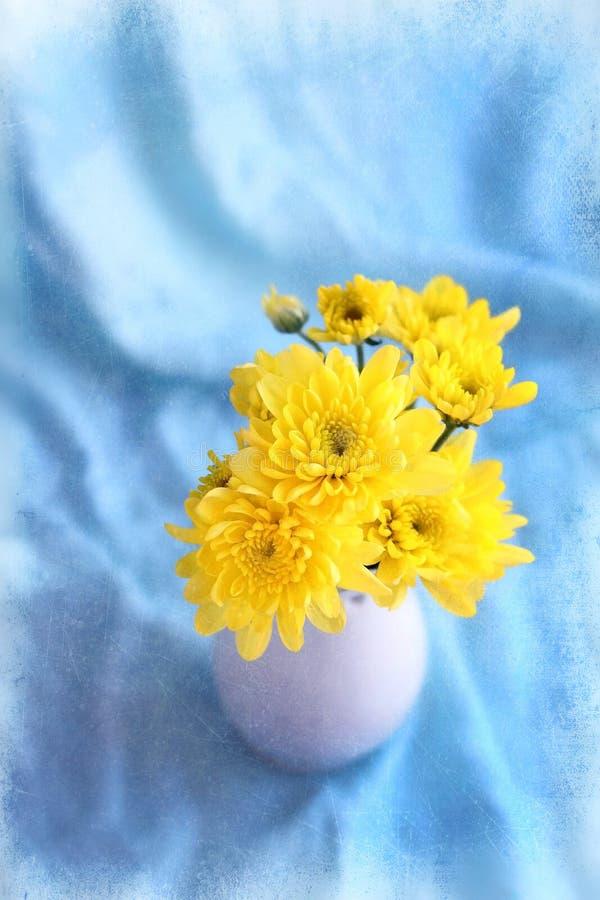 Guling blommar hrysanthemums i en vas på en blå bakgrund royaltyfria bilder