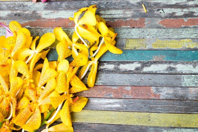 Guling blommar på färgrikt trä royaltyfria bilder