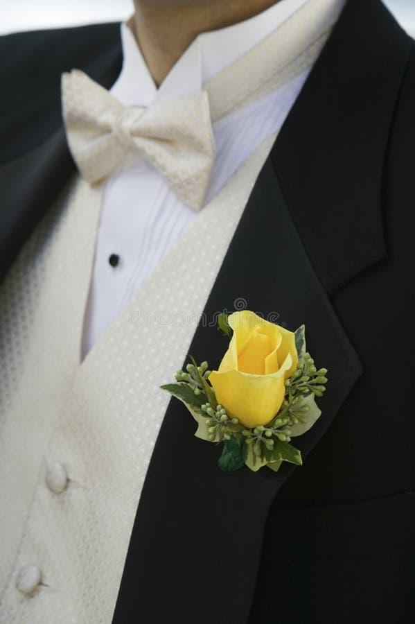 Gulingros på brudgumsmokingen (närbilden) arkivbild