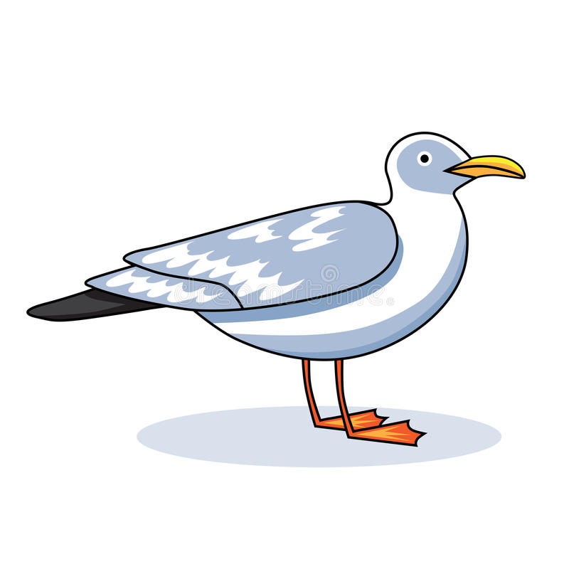 Free Gull Flight Bird And Seabird Gull. Сartoon Looking Gull. Sea Gull, On White Background. Herring Gull For Your Journal Stock Photos - 78943433