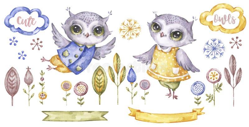 Gullig akvarelluggla Dekorativa djur och blom- illustration Födelsedagbeståndsdelsamling isolerad owlvektor för tecknad film illu vektor illustrationer