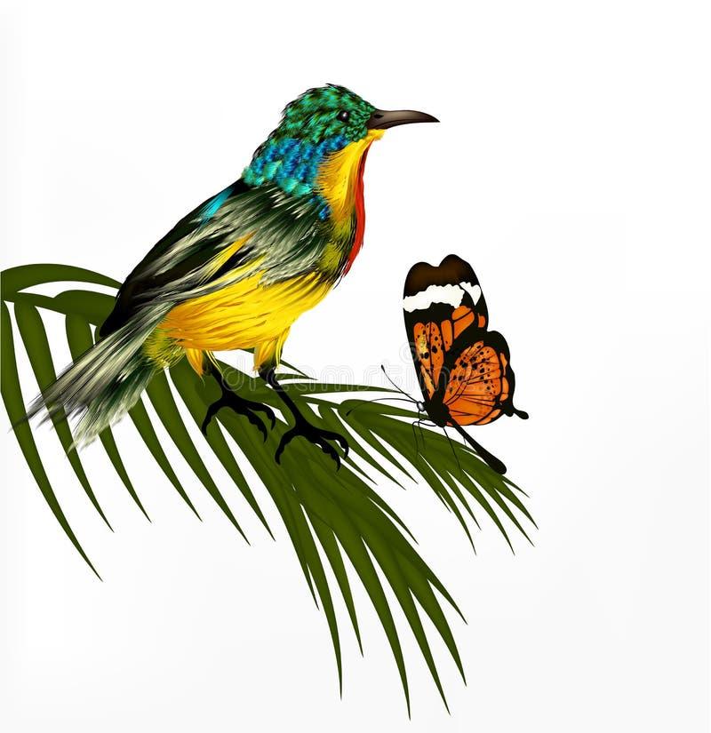 Gullig bakgrund med den realistiska specificerade tropiska fågeln royaltyfri illustrationer