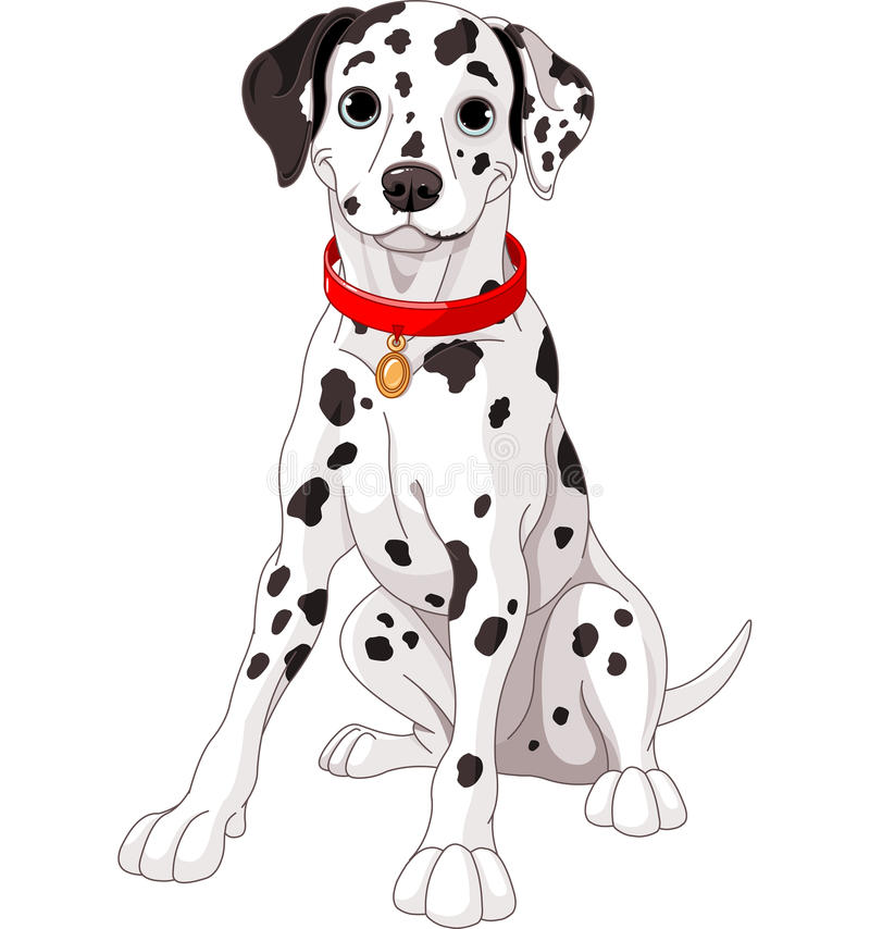 Gullig Dalmatian hund royaltyfri illustrationer