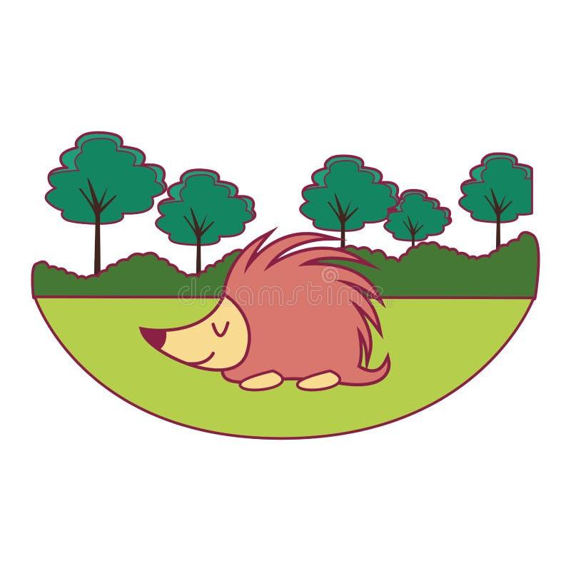 Gullig djur tecknad film f?r ett piggsvin royaltyfri illustrationer