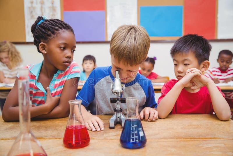 Gullig elev som ser till och med mikroskopet arkivbild