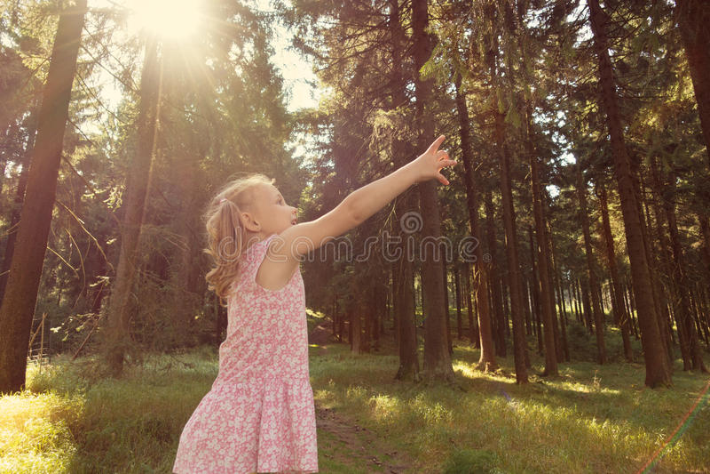 Gullig för flickaräckvidd för litet barn filial i sommarskog royaltyfria bilder