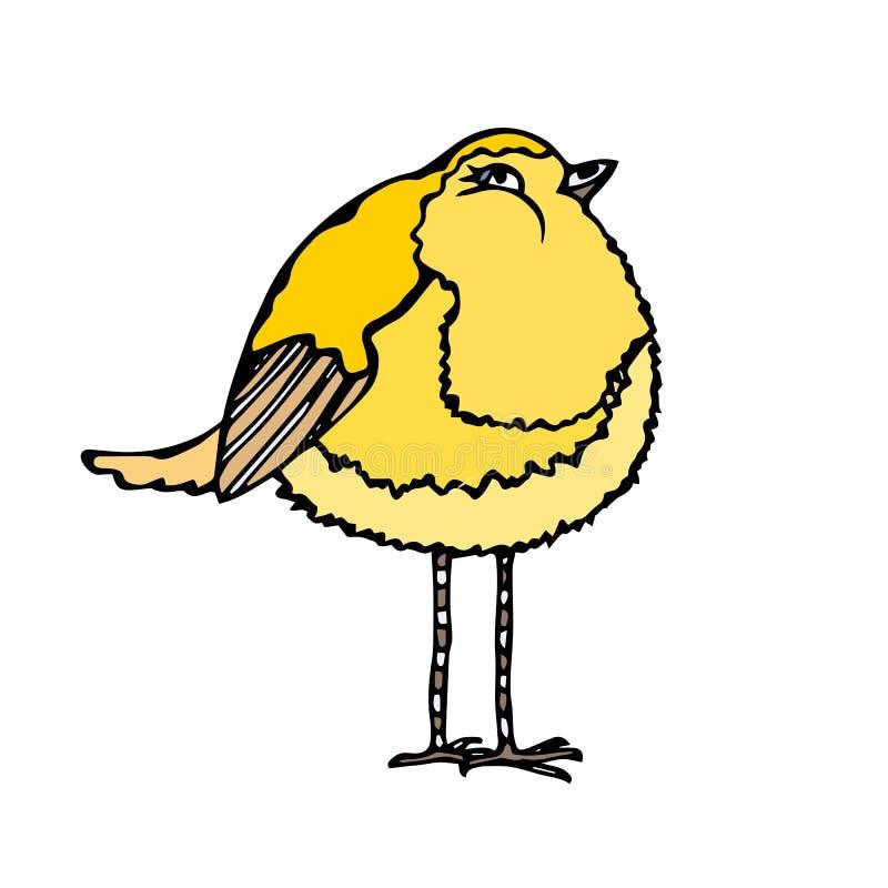 Gullig förtjusande gul kanariefågelfågel Isolerat på en dragen vit hand för bakgrundsklottertecknad film skissa vektorn vektor illustrationer