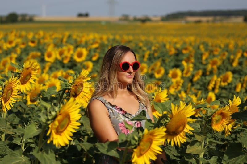 Gullig flicka i f?ltet mycket av solrosor fotografering för bildbyråer