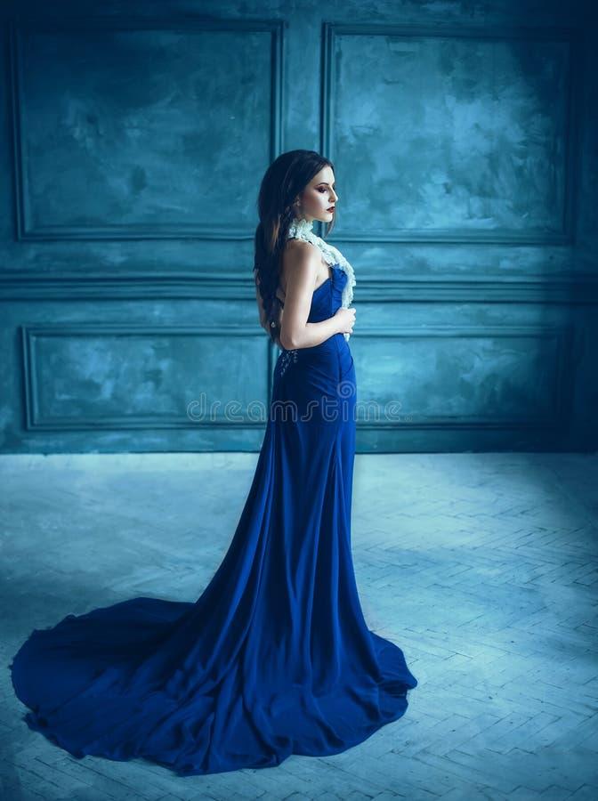 Gullig flicka i lyxig blåttklänning arkivbild