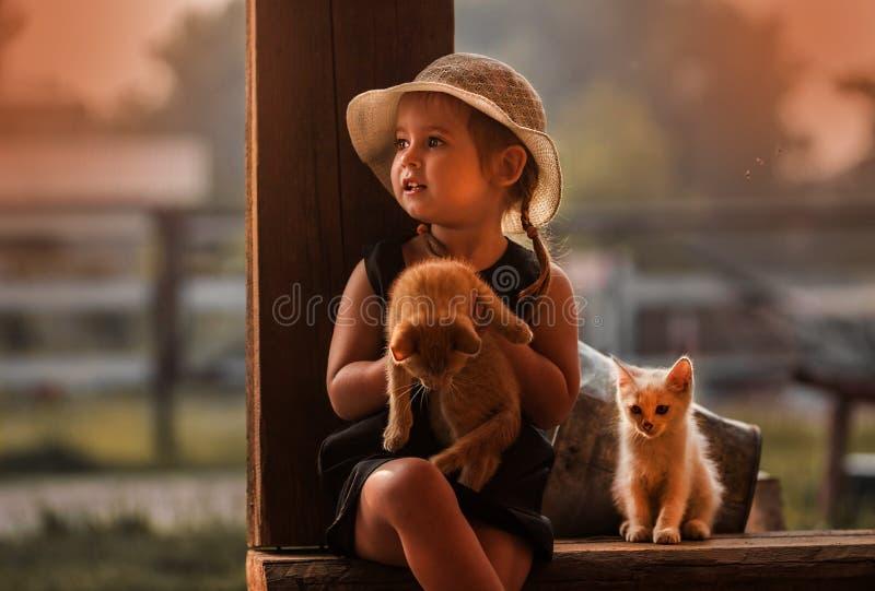 _gullig flicka med hatt och två kattunge royaltyfria bilder