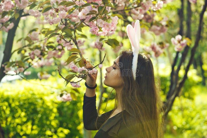 Gullig flicka med rosiga kaninöron som luktar sakura blommor royaltyfri foto